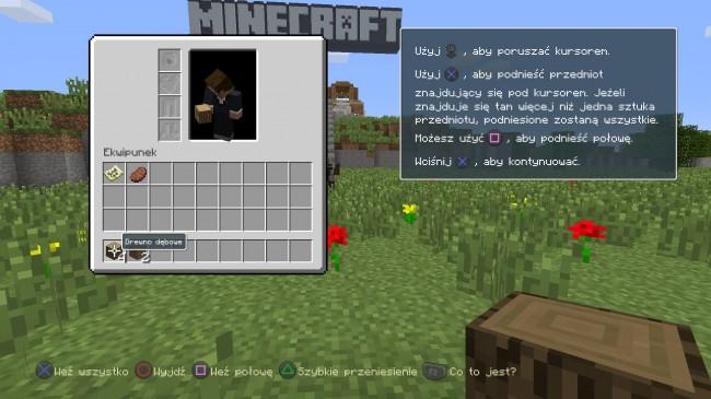Minecraft: PlayStation®4 Edition_20140905153843