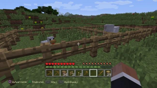 Minecraft: PlayStation®4 Edition_20140905221202