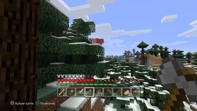 Minecraft: PlayStation®4 Edition_20140906184803