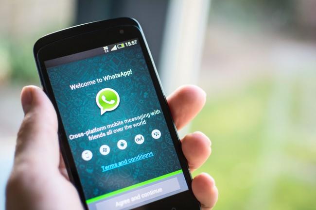 whatsapp wyniki