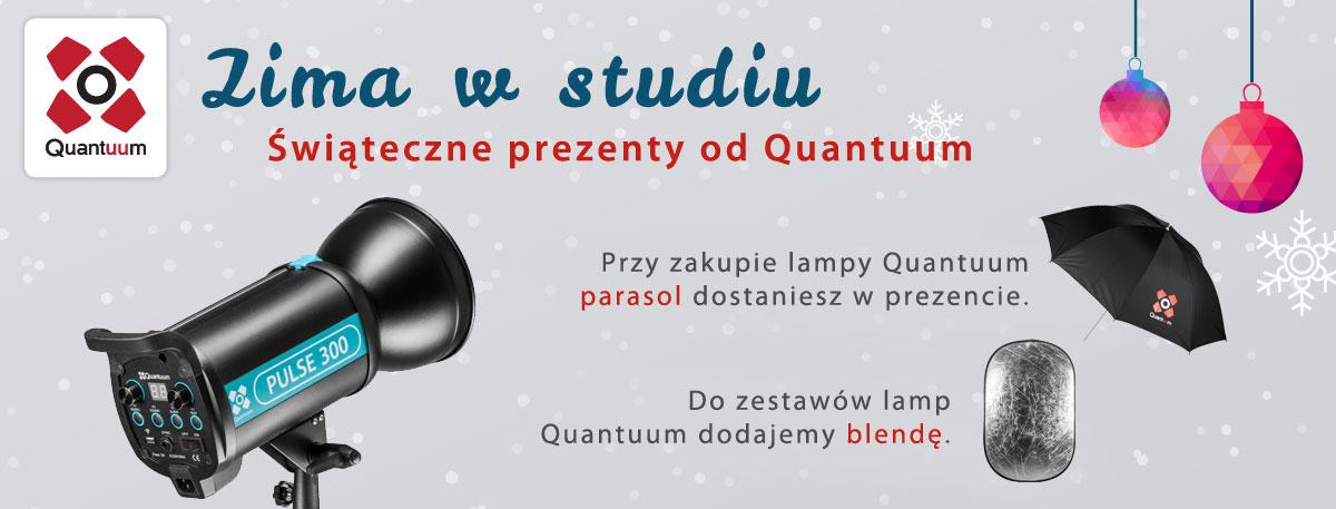 quantuum-winter-2014