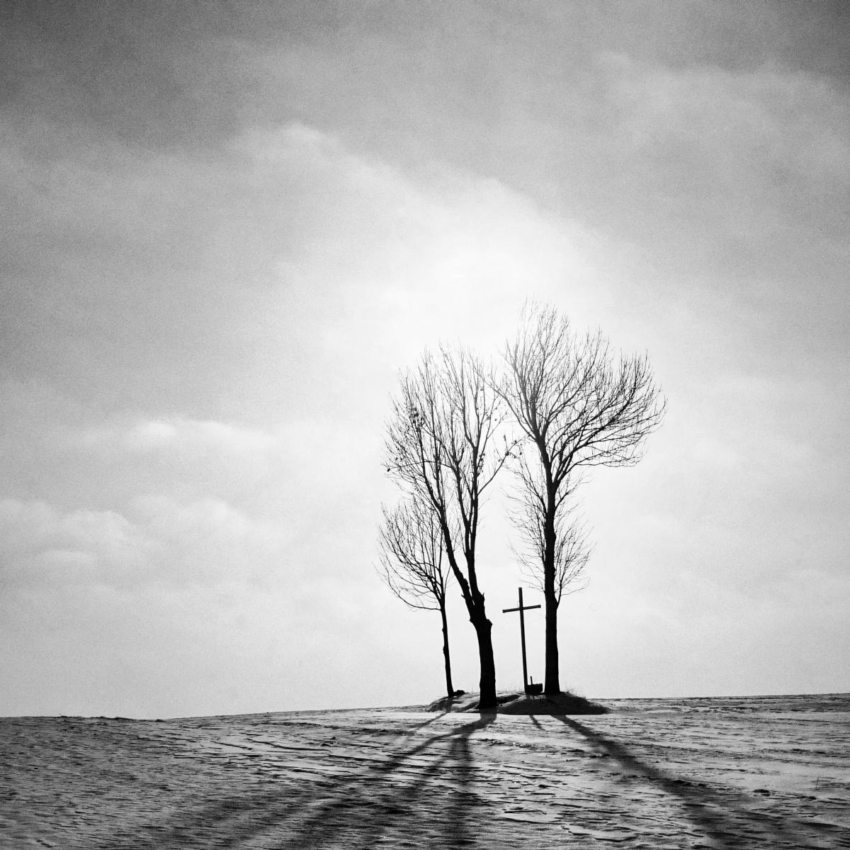 Fot. Ryszard Kaźmierczak