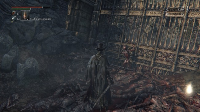 Bloodborne The Old Hunters (328)