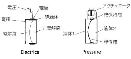 plynna soczewka 1