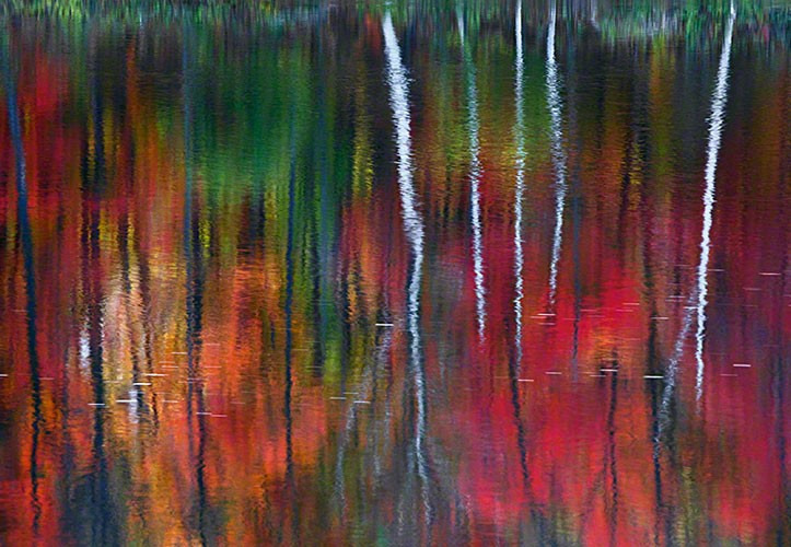 "20. Peter Lik ""One"" (2010), 1.000.000 dol."