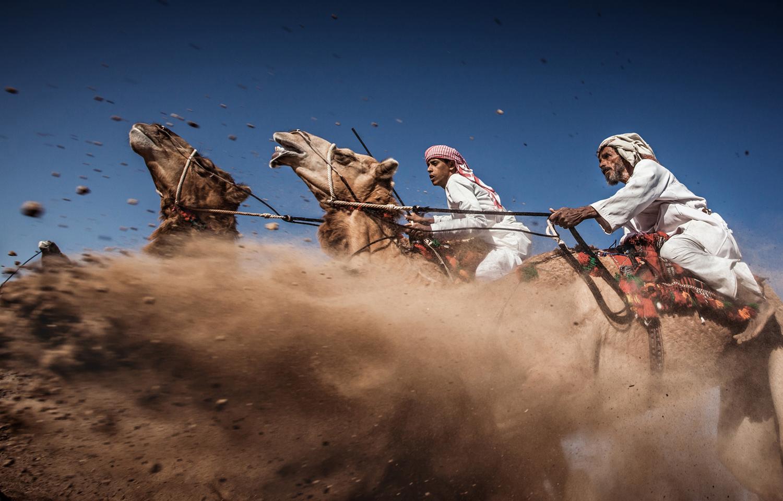 Autor: Ahmed Al Toqi. Camel Ardah, tradycyjne wyścigi wielbłądów. III miejsce