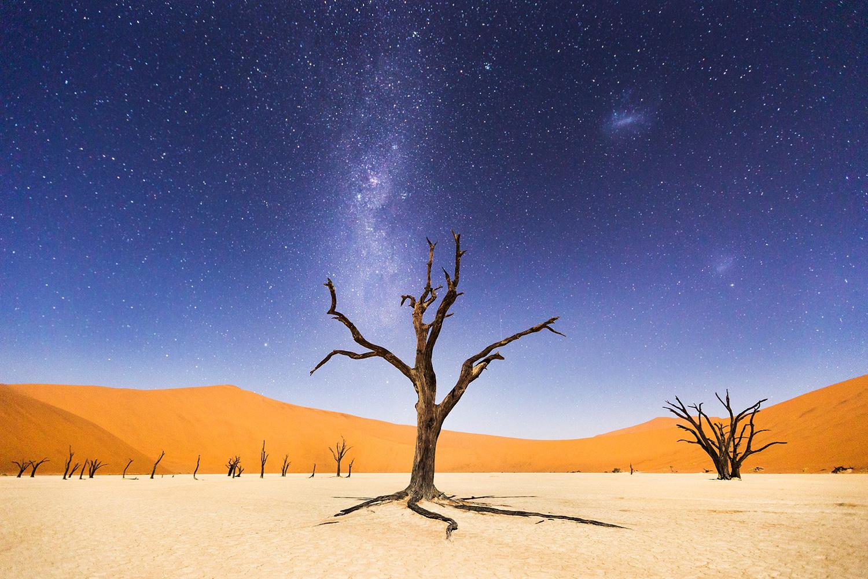 Autor: Beth McCarley. Deadveli w Namibii. Wyróżnienie