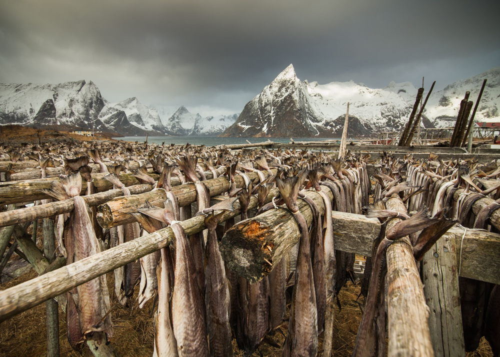 national-geographic-022