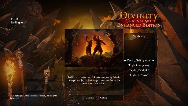 Divinity : Original Sin Enhanced Edition_20151103035702