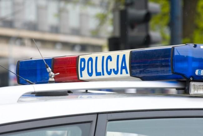 Polska policja korzysta z systemu Child Alert od 2013 roku